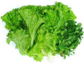 6 loại rau dành cho người có nguy cơ táo bón 11