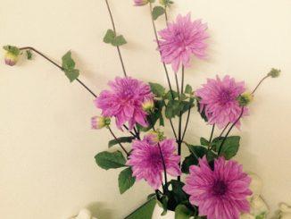 Phòng khách thêm rực rỡ với hoa thược dược – hoa của mùa Đông 5