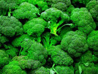 Những lợi ích của súp lơ đối với sức khỏe 11