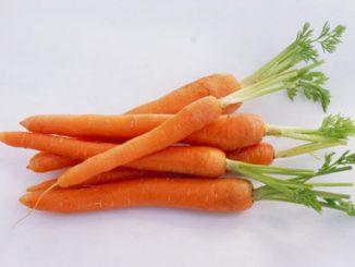 Cà rốt và lợi ích đối với sức khỏe 21