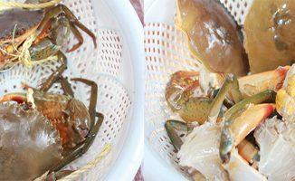 Hướng dẫn làm món cua biển rang muối ngon ngất ngây 13