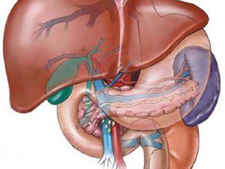 4 cách có thể giúp bạn ngăn ngừa gan nhiễm mỡ 11