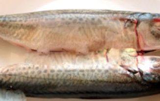 Cách làm cá nướng mỡ hành thơm ngon ngày cuối tuần 7