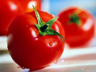 Cà chua giúp ngăn ngừa những rối loạn lipid máu 11