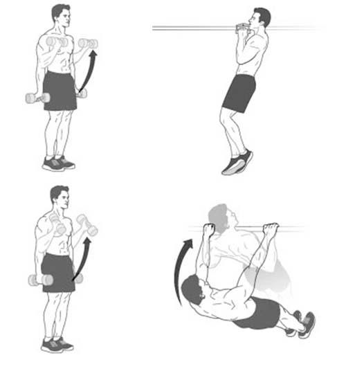 Tập luyện sức mạnh cho vai và tay