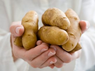 Cách trị nám da mặt dễ thực hiện nhất từ khoai tây 7