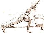 Hướng dẫn 4 động tác để cơ thể khỏe mạnh từ sáng đến tối